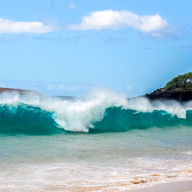 IMG_3878 by Keith Sutherland - Sports & Fitness Surfing ( maui, wave, surfers, big beach )