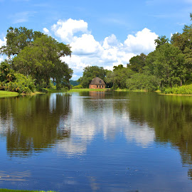 Middleton Place #3 by Cal Brown - Landscapes Travel ( travel photography, south carolina, pond, charleston, middleton place, historic, waterscape, water, landscape )