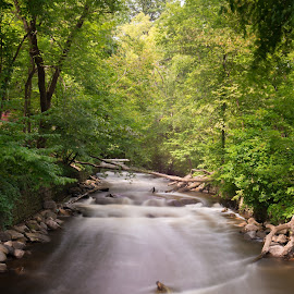 Long Exposure in Minnesota  by Winterlyn Stebner - Landscapes Waterscapes ( water, park, beautiful, forest, lake, beauty in nature, sunlight, minnesota, nature, fall, trees, summer, long exposure, rocks, river )