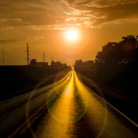 by Theresa Stevens - Landscapes Sunsets & Sunrises ( sky, sunset, trees, road, flare, sun )
