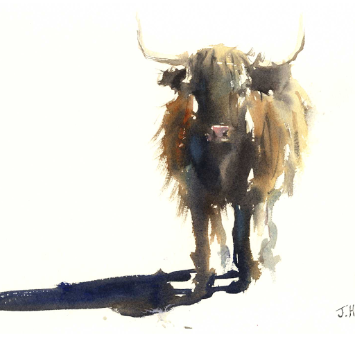 Highland cow art watercolour