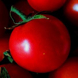 Bite of Cherry by Joan Doernhoefer - Food & Drink Fruits & Vegetables (  )