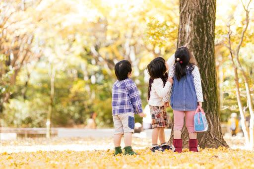 秋、それは幼稚園受験の季節