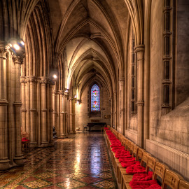 Inside Christ Church by Nick Johnson - Buildings & Architecture Places of Worship ( ireland, church, dublin, christ church, cathedral )