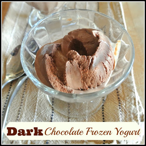 Dark Chocolate Frozen Yogurt