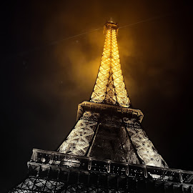 The Parisian Beauty by Ushashi Banerjee - Buildings & Architecture Statues & Monuments ( eiffel tower, night photography, black and white, eiffel, illumination )