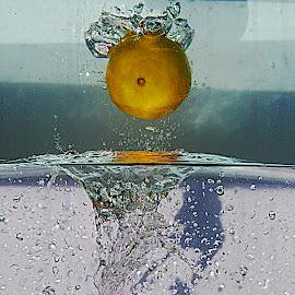 by Karen McKenzie McAdoo - Abstract Water Drops & Splashes
