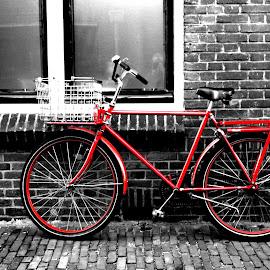 Dutch Red Bike by Scott Sleek - Transportation Bicycles ( red, bike, brick, transportation, netherlands, bicycle,  )