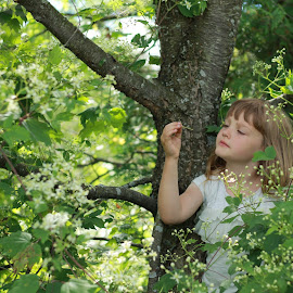 Thoughts from a Tree by Rebekah Rubingh - Babies & Children Child Portraits ( white flowers, girls, flora, white, children, trees, kids )