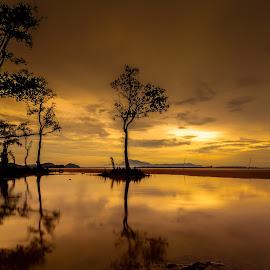 Golden Moment by Ircham Sujadmiko - Landscapes Sunsets & Sunrises