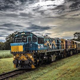 Kuranda Scenic Railway by Andy Rigby - Transportation Trains ( kuranda, cairns, queensland, waterfalls, railway, train )