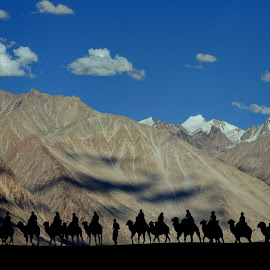 Walk in The Line by Santanu Karmakar - Landscapes Mountains & Hills ( #nubra valley, #nature, #landscape, #himalaya, #ladakh, #mountain, #desert, #bactrian camel, #shilhouette )