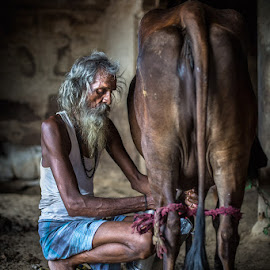 COW ASHRAM by Mauro De Bettio - People Portraits of Men ( backpaking, colors, varanasi, india, people, portrait, travel photography )