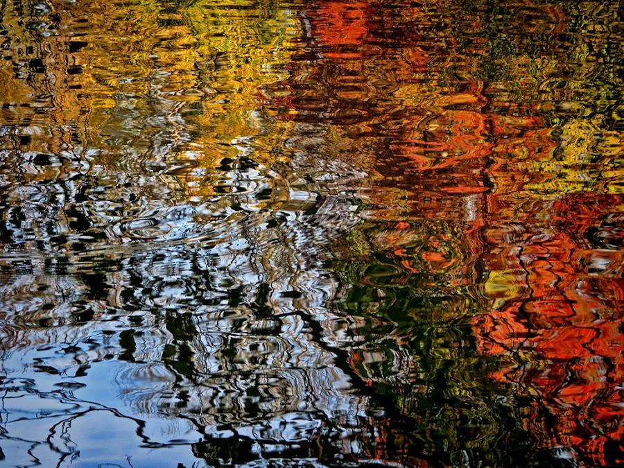 odrazi by Dunja Kolar - Abstract Light Painting ( maksimir, odrazi, croatia, lake, zagreb )