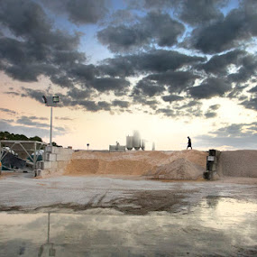 The Plant by Josh Balduf - City,  Street & Park  Vistas ( plant, clouds, orange, sand, reflection, truck, sunset, loader, concrete )