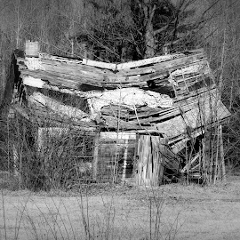 Fixer Upper... by Robert C. Walker - Buildings & Architecture Decaying & Abandoned ( ashland county, wisconsin, old, wood, caving in, house, decrepit, decaying, falling apart, highway 13, abandoned )