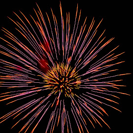 Purple Fire by Brenda Hooper - Abstract Fire & Fireworks ( abstract, 4th of july, fireworks, celebrate, independence day, fire,  )