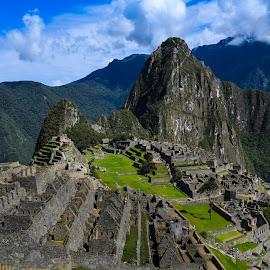 Machu Picchu by Steven Liffmann - Buildings & Architecture Public & Historical ( machu picchu )