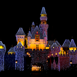 Castle in Light by Steven De Siow - Buildings & Architecture Public & Historical ( building, castle, architecture, light, nightscape )