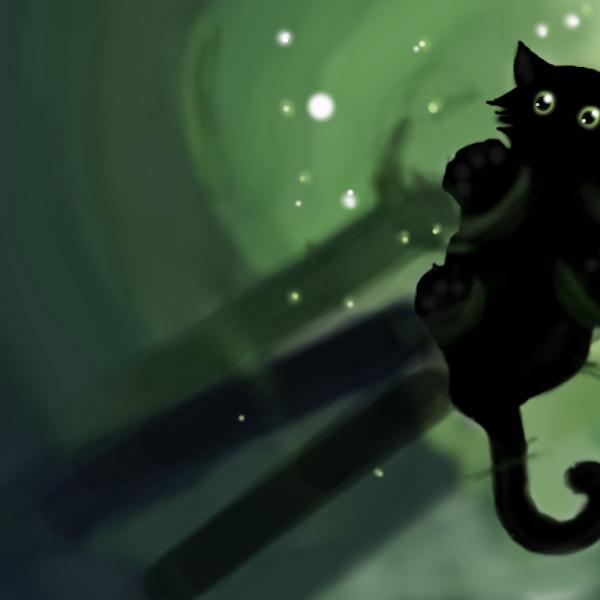 Apofiss Black Cat