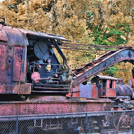 Train Crane in the Woods by Christopher Barker - Transportation Trains ( trees, train, crane, rust )