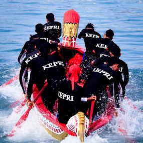 Kepri Team - Sea Eagle Boat Race  by Aldo Pasha Permana - Sports & Fitness Watersports ( eagle, sea, boat, race, batam, competition )