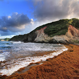 Sargasso Sea attack by Tadas Jucys - Landscapes Waterscapes ( water, waves, moss, sea, ocean, beach, dominica, atlantic, landscape, island, seamoss, red, sargasso, blue, sunset, evening )
