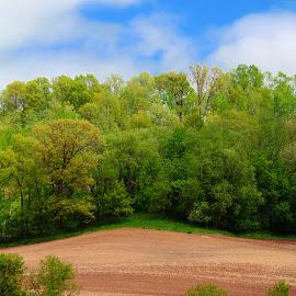 taylor hills by Jon Radtke - Landscapes Prairies, Meadows & Fields ( taylor hills )