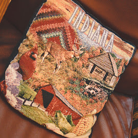 by Rebekah Cameron - Buildings & Architecture Office Buildings & Hotels ( indiana, pillow, room )