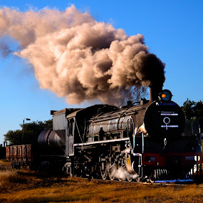 Steam train no 1 by Trippie Visser - Transportation Trains ( sky, grass, locomotive, train, steam )