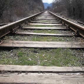 Време by Georgi Kolev - Transportation Railway Tracks ( релси., светлина., ден., време., дървета. )