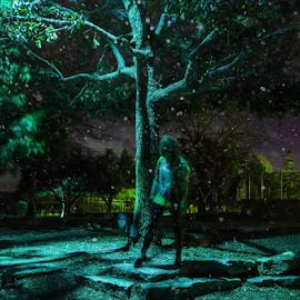 Nocturnal I by Freddie Meagher - Digital Art People