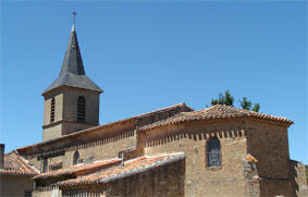 photo de Saint Martin (Montredon Labessonnié) (Saint Martin de Calmès)