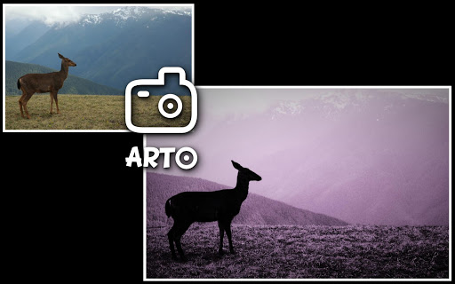 Arto: black and white photo - screenshot