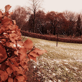 by Filio Starova - News & Events Weather & Storms