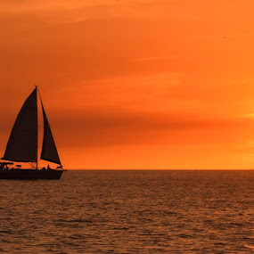 Into The Sunset by Lorna Littrell - Landscapes Sunsets & Sunrises ( water, waterscape, sunset, sea, landscape, sailboat,  )