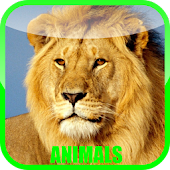 Game Animal Sounds Zoo apk for kindle fire