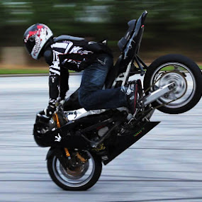 stunt by Skate Breed - Transportation Motorcycles ( motorcycle )