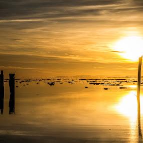 Great Salt Lake by Mat Hockett - Landscapes Sunsets & Sunrises