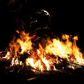 Light it up by Rishikes Halder - Abstract Fire & Fireworks ( burning, natural, ritual, festival, night, fire, wood, abstract, flame, india, flames )