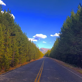 Mountain road by D.j. Nichols - Instagram & Mobile Android ( mountain, road )