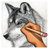 Download Wolves Drawing step by step APK for Android Kitkat