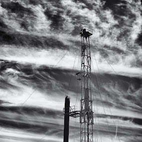 The Rig by Roger Armstrong - Products & Objects Industrial Objects ( clouds, monochrome, sky, texas, gas well, drilling rig, oil well )
