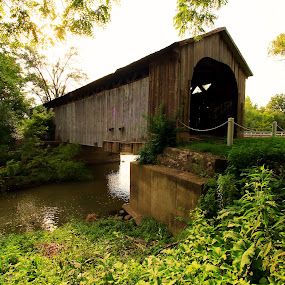 Covered Bridge in Ohio by Marsha Biller - Buildings & Architecture Bridges & Suspended Structures ( pwcbridges, , bridge, renewal, green, trees, forests, nature, natural, scenic, relaxing, meditation, the mood factory, mood, emotions, jade, revive, inspirational, earthly, relax, tranquil, tranquility )