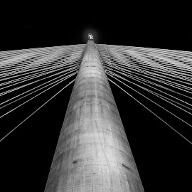 String by Nenad Borojevic Foto - Black & White Buildings & Architecture ( bridge,  )