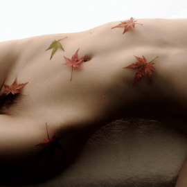 Covered in Autumn Leaves by Vineet Johri - Nudes & Boudoir Artistic Nude ( art nude, autumn leaves, vkumar photography, kittie, shadows )