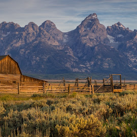Classic View  by Brock Slinger - Landscapes Prairies, Meadows & Fields ( first light, national park, mountains, teton national park, barn, sunrise )