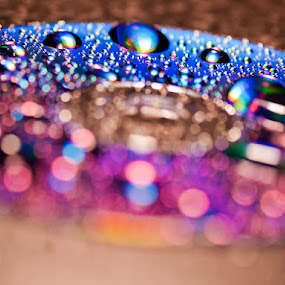 Water Drops by Jayne Hodge - Abstract Macro ( water, cd )