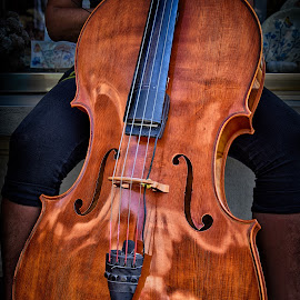 Cello by Marco Bertamé - Artistic Objects Musical Instruments ( music, red, wood, string, brown, cello, curves )