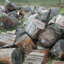 Firewood by Edward James - Abstract Patterns ( farm, tasmania, winter, wood, outdoor )
